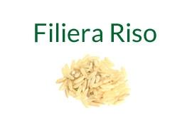 Filiera Riso - Case History